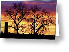 Good Morning Cows Colorful Sunrise Greeting Card