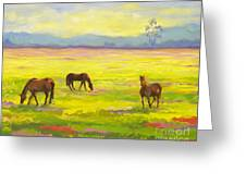 Good Morning Horses Greeting Card
