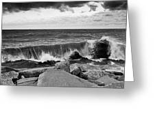Good Morning In Black And White Greeting Card