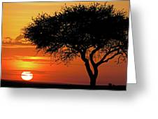 Good Night, Maasai Mara Greeting Card