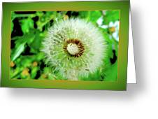 Good Wishes Greeting Card