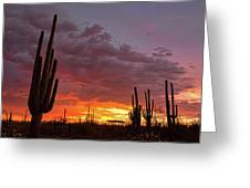 Goodnight Tucson Greeting Card