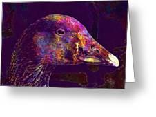 Goose Bird Animal Nature Outdoor  Greeting Card