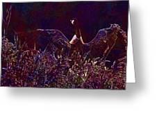 Goose Bird Wildlife Nature Fly  Greeting Card