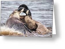 Goose Epic Battle Greeting Card
