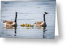 Goose Family Greeting Card
