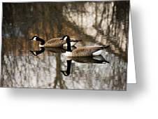 Goose Reflection Greeting Card