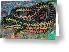 Gopher Snake Greeting Card by Pamela Cooper