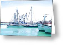 Gordon's Bay Harbour Greeting Card by Jan Hattingh