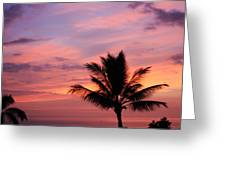 Gorgeous Hawaiian Sunset - 1 Greeting Card
