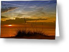 Gorgeous Sunset Greeting Card