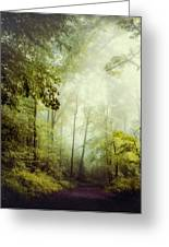 Gorgeous Woods Greeting Card