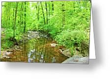 Georgia Stream In Summer Greeting Card