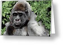 Gorilla My Dreams Greeting Card