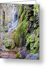 Gorman Falls At Colorado State Park II - San Saba Texas Hill Country Greeting Card