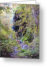 Gorman Falls At Colorado State Park IIi - San Saba Texas Hill Country Greeting Card