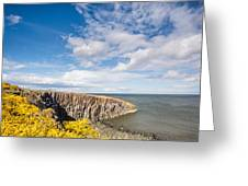 Gorse At Cullernose Point Greeting Card