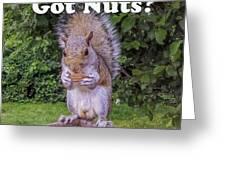 Got Nuts? Greeting Card