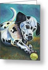 Gotballs4pets? Dalmatian Greeting Card
