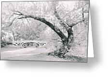 Gothic Bridge 28 Greeting Card