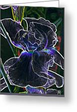 Gothic Iris Greeting Card