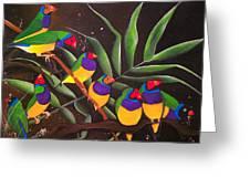 Gouldian Finch Rainbow Greeting Card