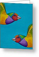 Gouldian Finches Greeting Card