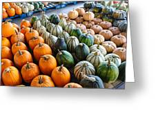 Gourds Galore Greeting Card