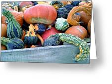 Gourds In A Crate Greeting Card