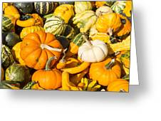 Gourds Pile 1 A Greeting Card