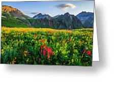 Governor's Basin In Bloom Greeting Card