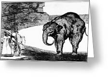 Goya: Elephant, C1820 Greeting Card