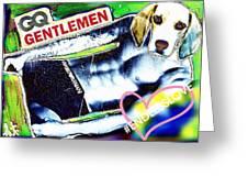 Gq Gentle Dog Greeting Card