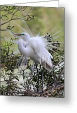 Grace In Nature II Greeting Card