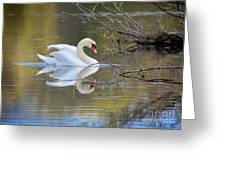 Graceful Swan I Greeting Card