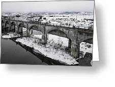 Graceful Waterways Greeting Card
