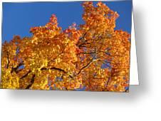 Gradient Autumn Tree Greeting Card