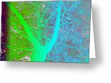 Gradient Tree  Greeting Card