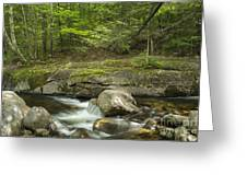 Grafton Notch Maine Greeting Card