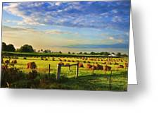Grain In The Field Greeting Card