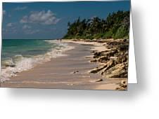 Grand Bahamas Beach Greeting Card