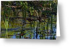 Grand Beach Marsh Greeting Card