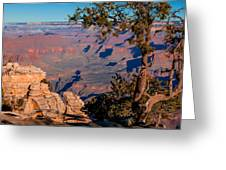 Grand Canyon 20 Greeting Card