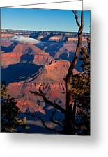 Grand Canyon 30 Greeting Card