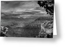 Grand Canyon Bw Greeting Card