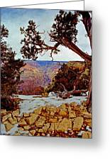Grand Canyon National Park - Winter On South Rim Greeting Card