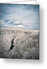 Grand Canyon Of Pa In Infrared Greeting Card