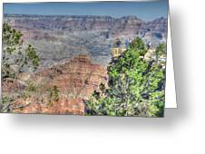 Grand Canyon Overlook Greeting Card by David Armstrong
