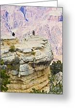 Grand Canyon Photo Op Greeting Card
