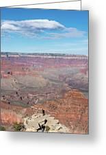 Grand Canyon Selfie Mania Greeting Card
